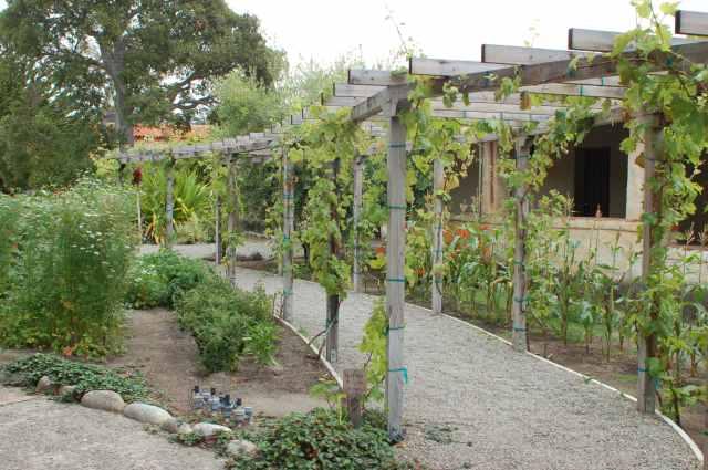 Mission Carmel Vegetable Garden