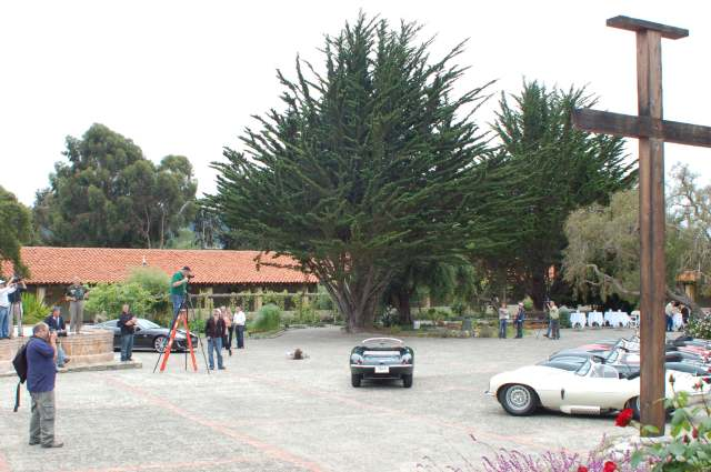 The Jaguar, The Cypress, and The Cross