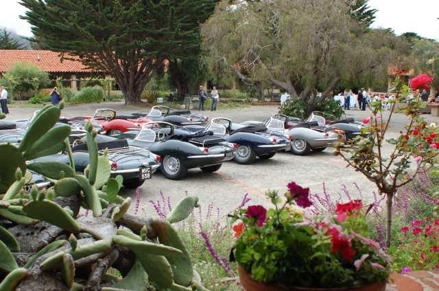 Jaguar Back Row Boys Rears & Roses