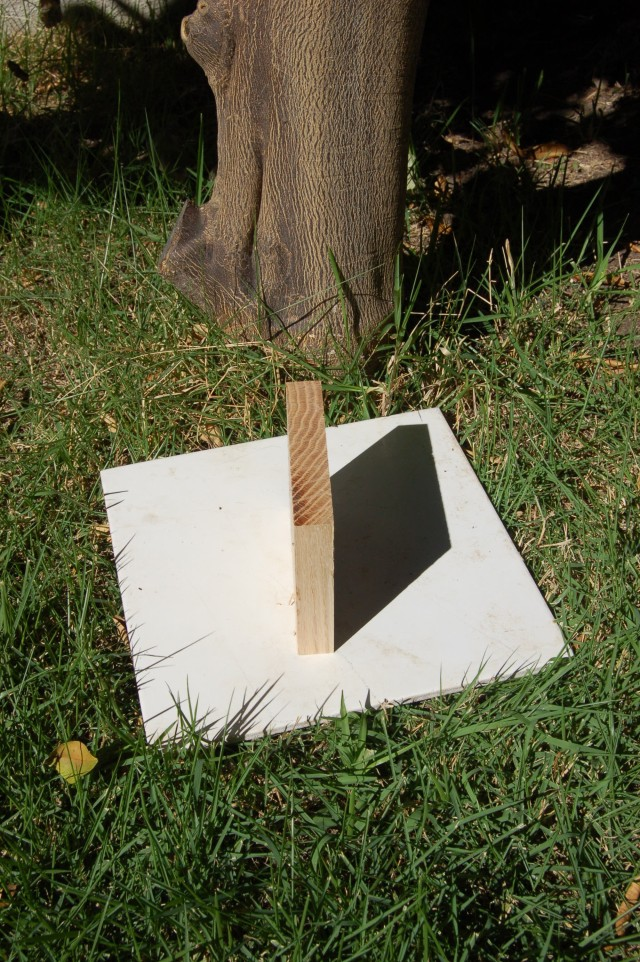 An Oak Board, 13 ounces on a 1 foot square tile, orange tree background