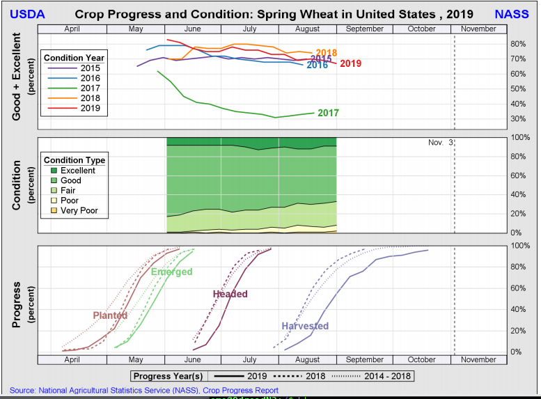 Spring Wheat 12 Nov 2019