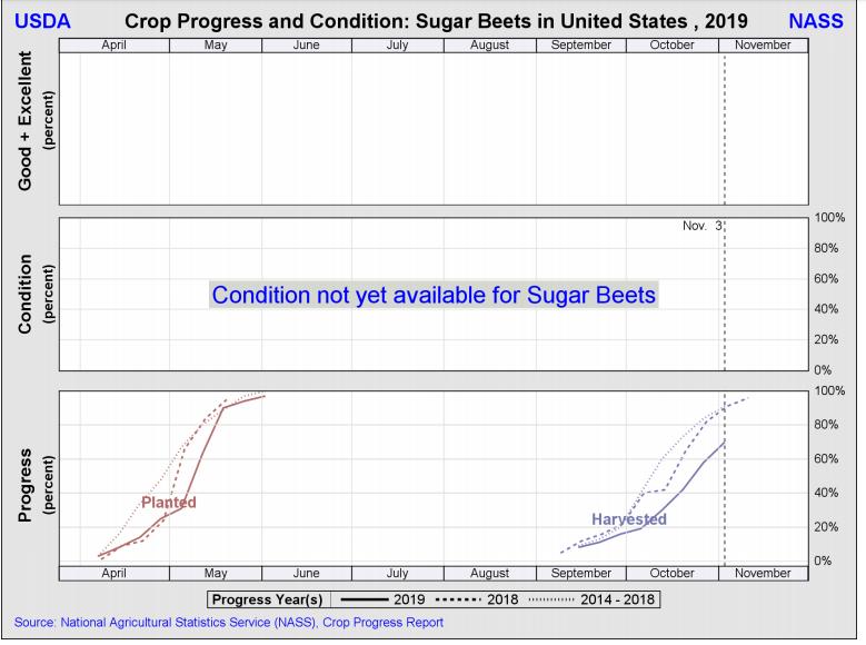 Sugarbeets 12 Nov 2019